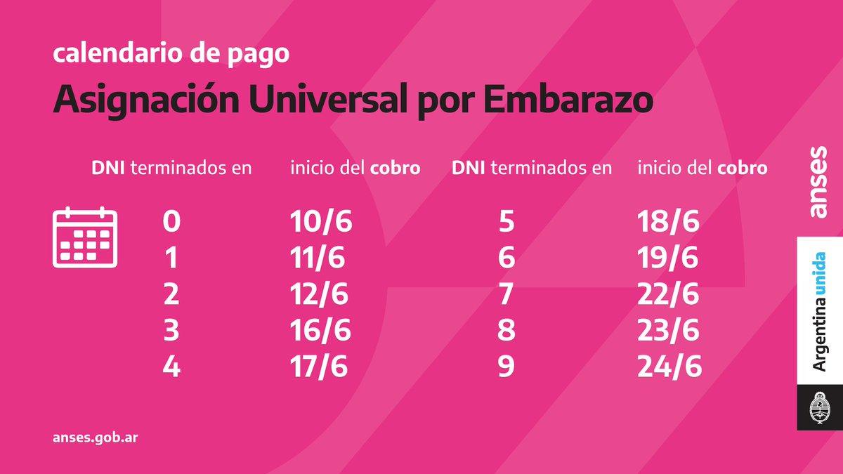 ANSES @ansesgob: ???? Calendario de Pago para Asignación Universal por Embarazo ???????? A partir del 10/06 comenzarán a cobrar junto con la asignación y según el calendario, un nuevo pago del Ingreso Familiar de Emergencia (IFE).  #CuidarteEsCuidarnos #ArgentinaUnida https://t.co/iUD9gaIZYZ
